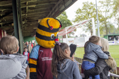 Bertie Bee mingling with the crowds