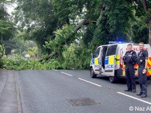 Gisburn_Road_Tree_Down_2