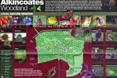 Alkincoats Woodland Nature Reserve